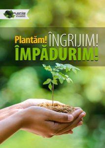 Primăvara se numără puieții – 170.000 de copăcei plantați
